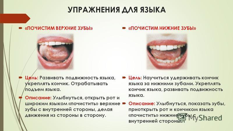 УПРАЖНЕНИЯ ДЛЯ ЯЗЫКА «ПОЧИСТИМ ВЕРХНИЕ ЗУБЫ» Цель: Развивать подвижность языка, укреплять кончик. Отрабатывать подъем языка. Описание: Улыбнуться, открыть рот и широким языком «почистить» верхние зубы с внутренней стороны, делая движения из стороны в
