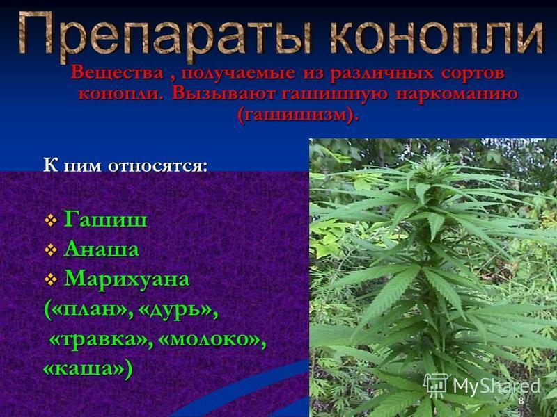 Лекарственные средства, подавляющие нервное напряжение и расстройство. К ним относятся: Седуксен Элениум Нитрозепам Реланиум и другие. 7