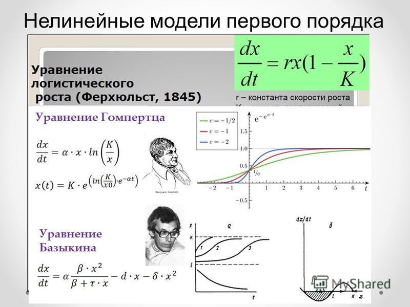 Нелинейные модели первого порядка