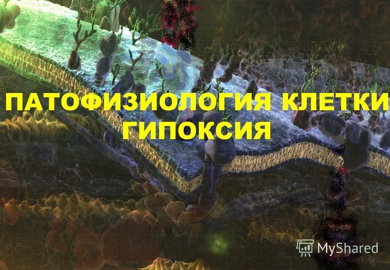 ПАТОФИЗИОЛОГИЯ КЛЕТКИ ГИПОКСИЯ