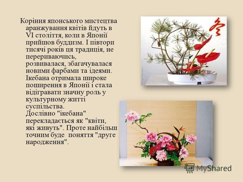 Коріння японського мистецтва аранжування квітів йдуть в VI століття, коли в Японії прийшов буддизм. І півтори тисячі років ця традиція, не перериваючись, розвивалася, збагачувалася новими фарбами та ідеями. Ікебана отримала широке поширення в Японії