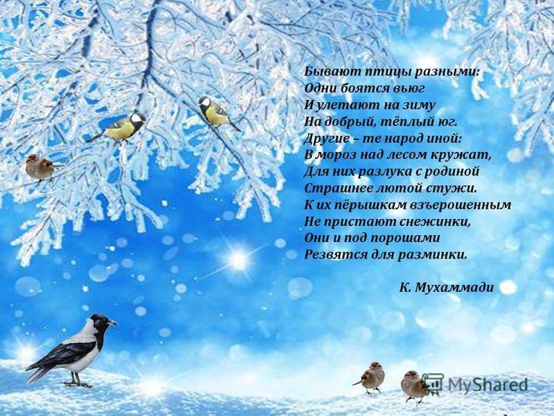 Бывают птицы разными: Одни боятся вьюг И улетают на зиму На добрый, тёплый юг. Другие – те народ иной: В мороз над лесом кружат, Для них разлука с родиной Страшнее лютой стужи. К их пёрышкам взъерошенным Не пристают снежинки, Они и под порошами Резвя