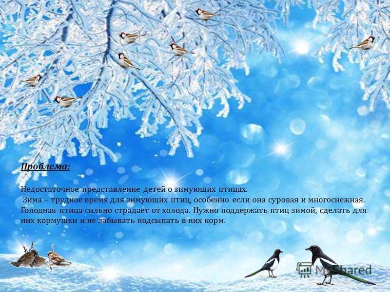 Проблема: Недостаточное представление детей о зимующих птицах. Зима – трудное время для зимующих птиц, особенно если она суровая и многоснежная. Голодная птица сильно страдает от холода. Нужно поддержать птиц зимой, сделать для них кормушки и не забы