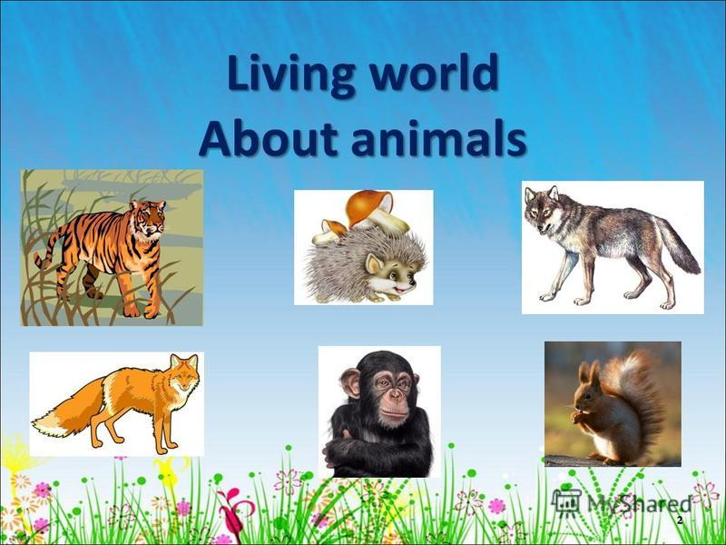 Living world About animals 2