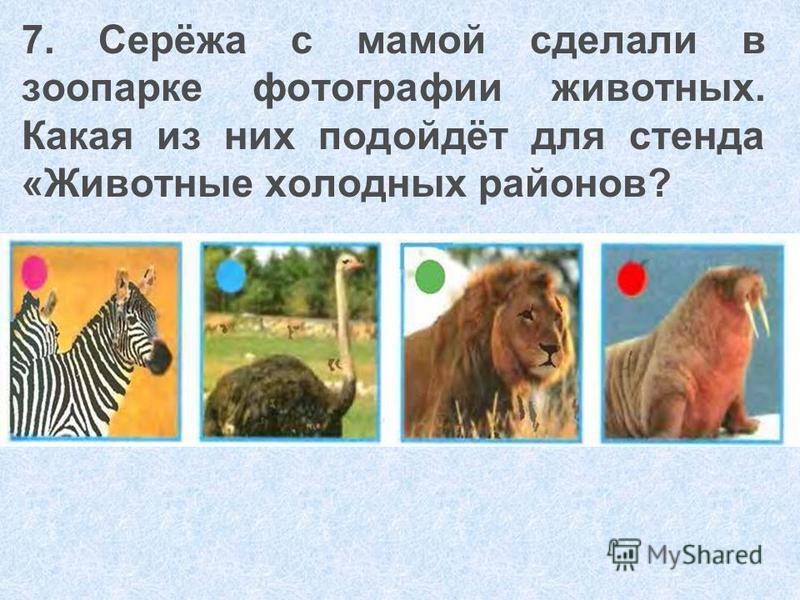 7. Серёжа с мамой сделали в зоопарке фотографии животных. Какая из них подойдёт для стенда «Животные холодных районов?