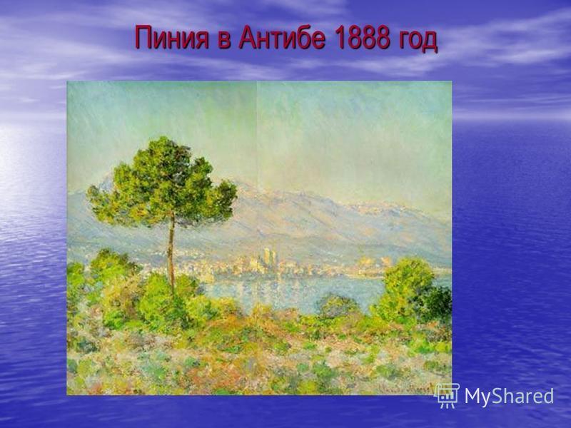 Пиния в Антибе 1888 год