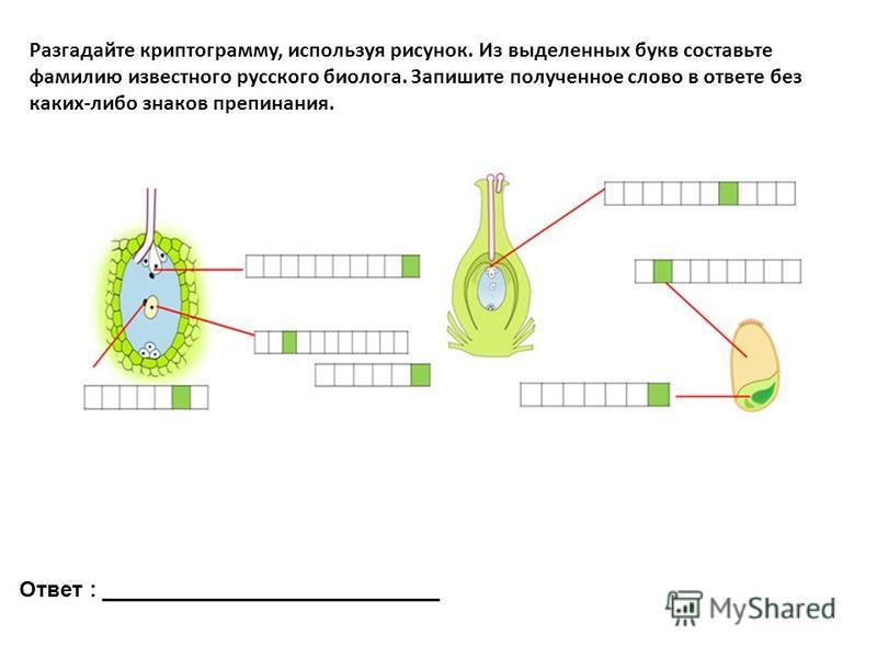 Разгадайте криптограмму, используя рисунок. Из выделенных букв составьте фамилию известного русского биолога. Запишите полученное слово в ответе без каких-либо знаков препинания. Ответ : ____________________________
