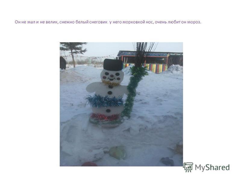 Он не мал и не велик, снежно белый снеговик у него морковкой нос, очень любит он мороз.