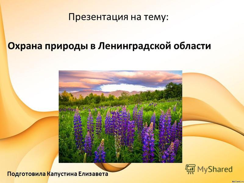 Охрана природы в Ленинградской области Презентация на тему: Подготовила Капустина Елизавета