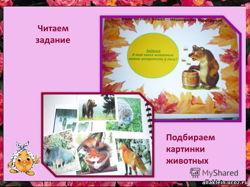 Читаем задание Подбираем картинки животных