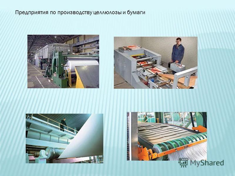 Предприятия по производству целлюлозы и бумаги