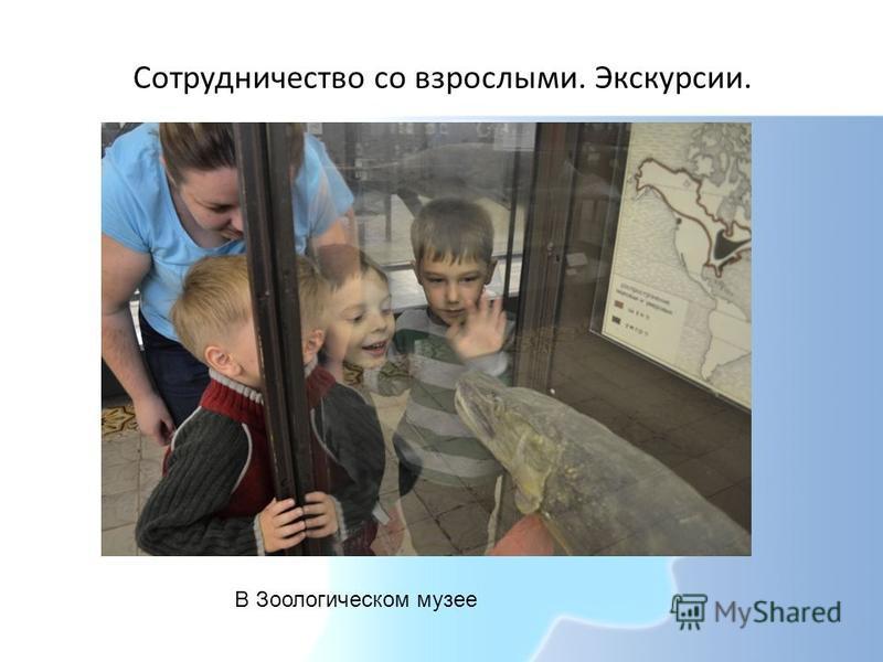 Сотрудничество со взрослыми. Экскурсии. В Зоологическом музее