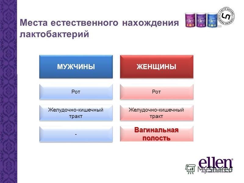 МУЖЧИНЫ Рот Желудочно-кишечный тракт - - ЖЕНЩИНЫ Рот Желудочно-кишечный тракт Вагинальная полость Места естественного нахождения лактобактерий