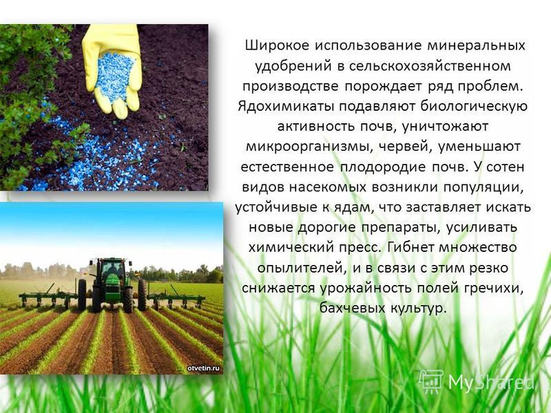Широкое использование минеральных удобрений в сельскохозяйственном производстве порождает ряд проблем. Ядохимикаты подавляют биологическую активность почв, уничтожают микроорганизмы, червей, уменьшают естественное плодородие почв. У сотен видов насек