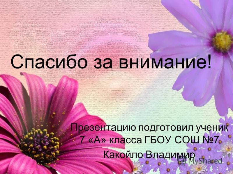 Спасибо за внимание! Презентацию подготовил ученик 7 «А» класса ГБОУ СОШ 7 Какойло Владимир