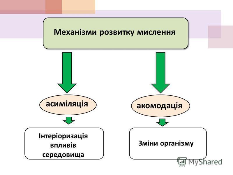 Механізми розвитку мислення асиміляція акомодація Інтеріоризація впливів середовища Зміни організму