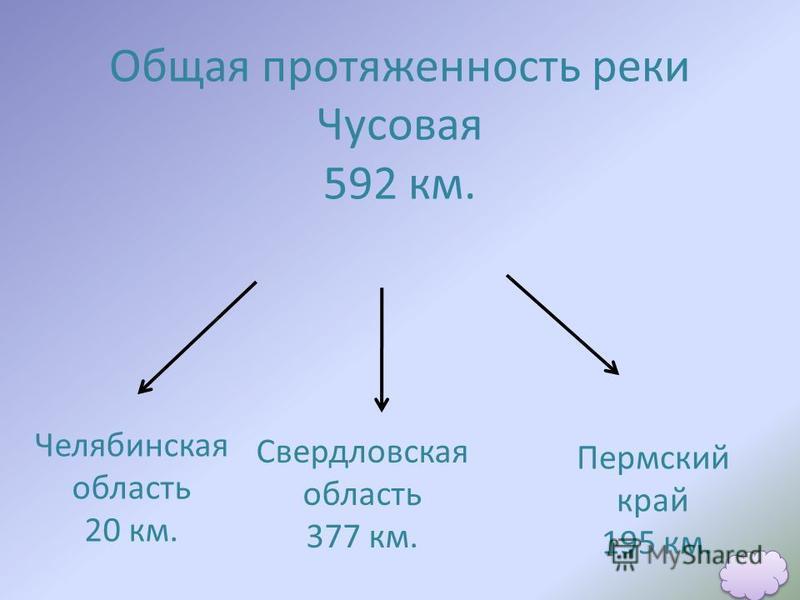 Общая протяженность реки Чусовая 592 км. Челябинская область 20 км. Свердловская область 377 км. Пермский край 195 км.