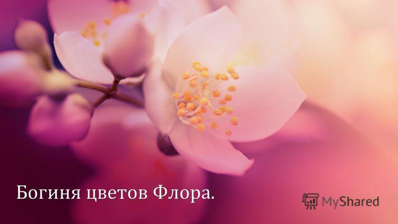 Богиня цветов Флора.Богиня цветов Флора.