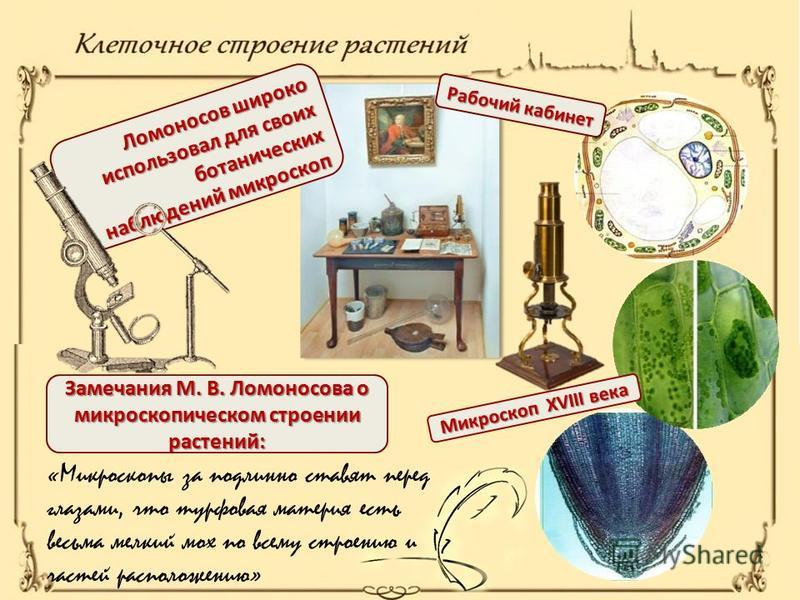 Ломоносов широко использовал для своих ботанических наблюдений микроскоп «Микроскопы за подлинно ставят перед глазами, что турфовая материя есть весьма мелкий мох по всему строению и частей расположению» Замечания М. В. Ломоносова о микроскопическом