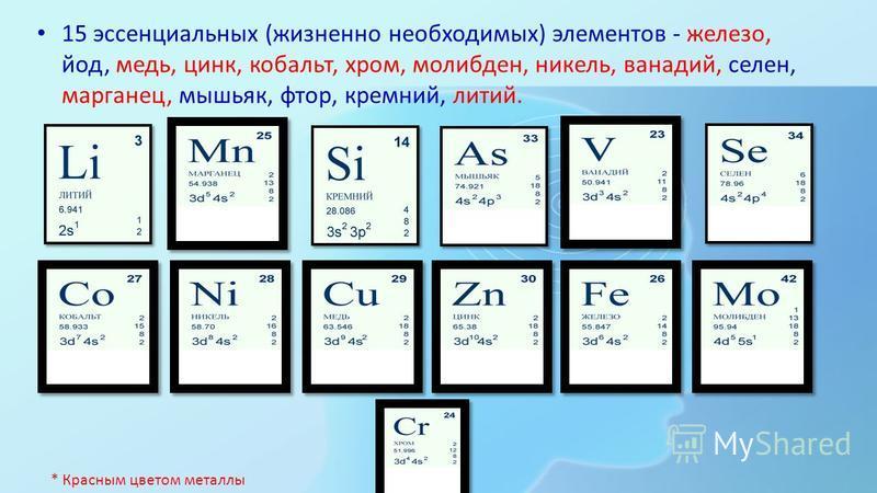 Все химические элементы можно разбить на группы: 12 структурных элементов, это углерод, кислород, водород, азот, кальций, магний, натрий, калий, сера, фосфор, фтор и хлор. * Красным цветом металлы