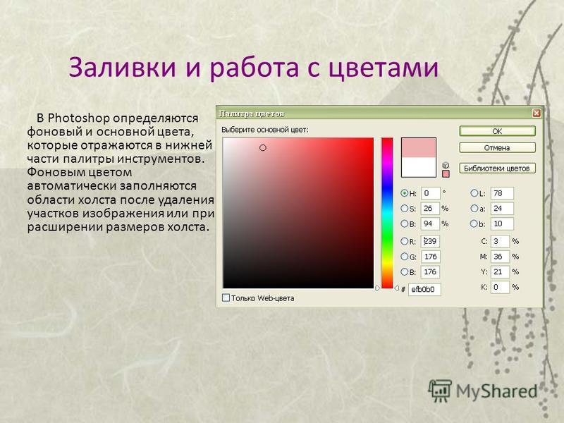 Заливки и работа с цветами В Photoshop определяются фоновый и основной цвета, которые отражаются в нижней части палитры инструментов. Фоновым цветом автоматически заполняются области холста после удаления участков изображения или при расширении разме