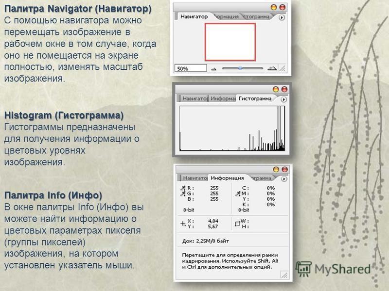 Палитра Navigator (Навигатор) С помощью навигатора можно перемещать изображение в рабочем окне в том случае, когда оно не помещается на экране полностью, изменять масштаб изображения. Палитра Info (Инфо) В окне палитры Info (Инфо) вы можете найти инф
