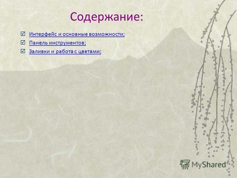 Содержание: Интерфейс и основные возможности; Панель инструментов; Заливки и работа с цветами;