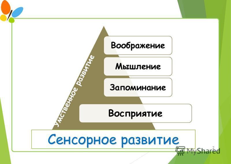 2 Воображение МышлениеЗапоминание Восприятие Умственное развитие Сенсорное развитие