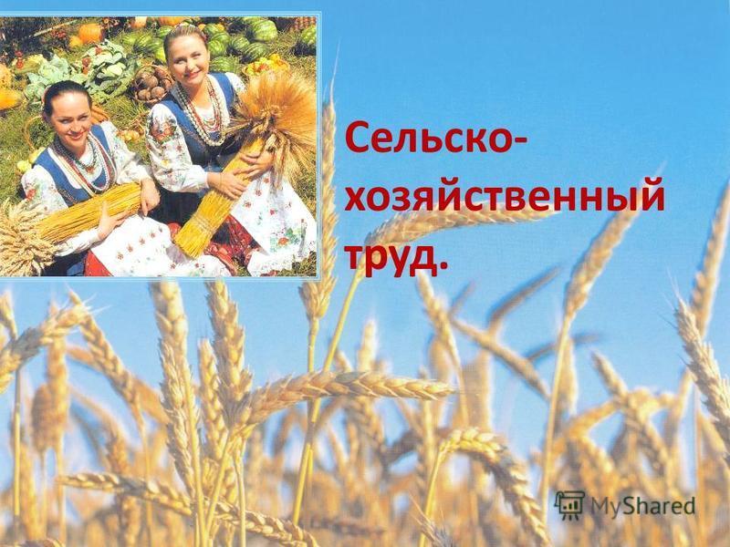 Сельско- хозяйственный труд.