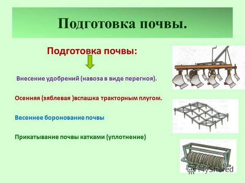 Подготовка почвы. Подготовка почвы: Внесение удобрений (навоза в виде перегноя). Осенняя (зяблевая )вспашка тракторным плугом. Весеннее боронование почвы Прикатывание почвы катками (уплотнение)