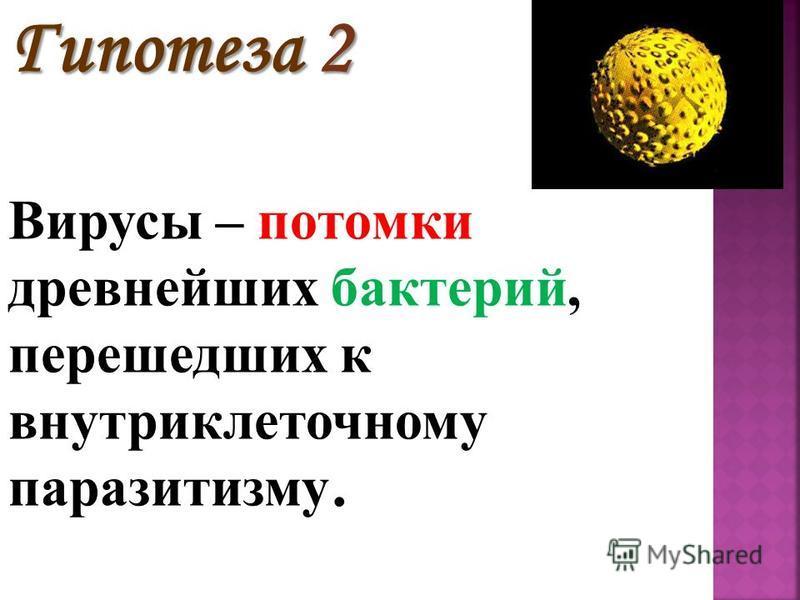 Гипотеза 2 Вирусы – потомки древнейших бактерий, перешедших к внутриклеточному паразитизму.