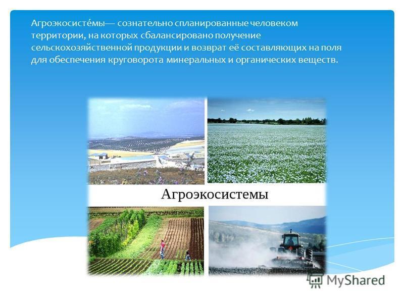 Агроэкосисте́мы сознательно спланированные человеком территории, на которых сбалансировано получение сельскохозяйственной продукции и возврат её составляющих на поля для обеспечения круговорота минеральных и органических веществ.