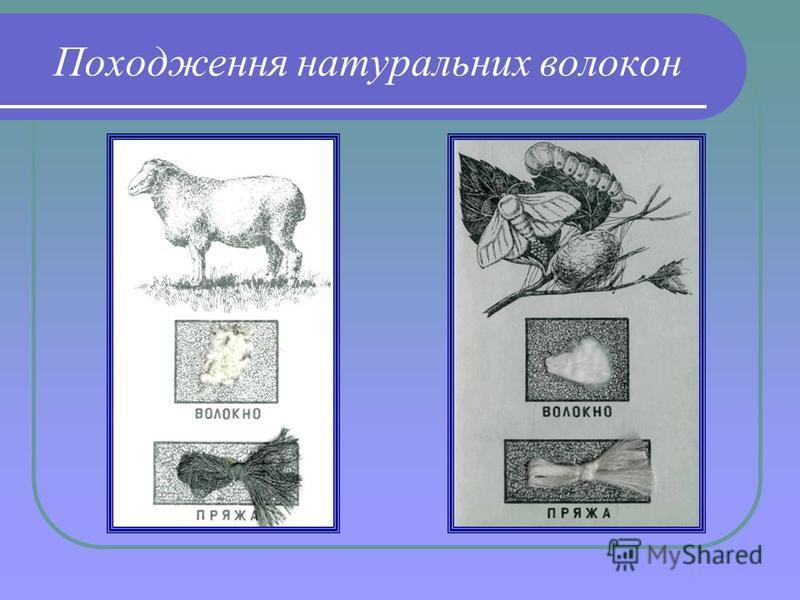 Походження натуральних волокон