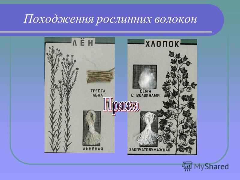 Походження рослинних волокон