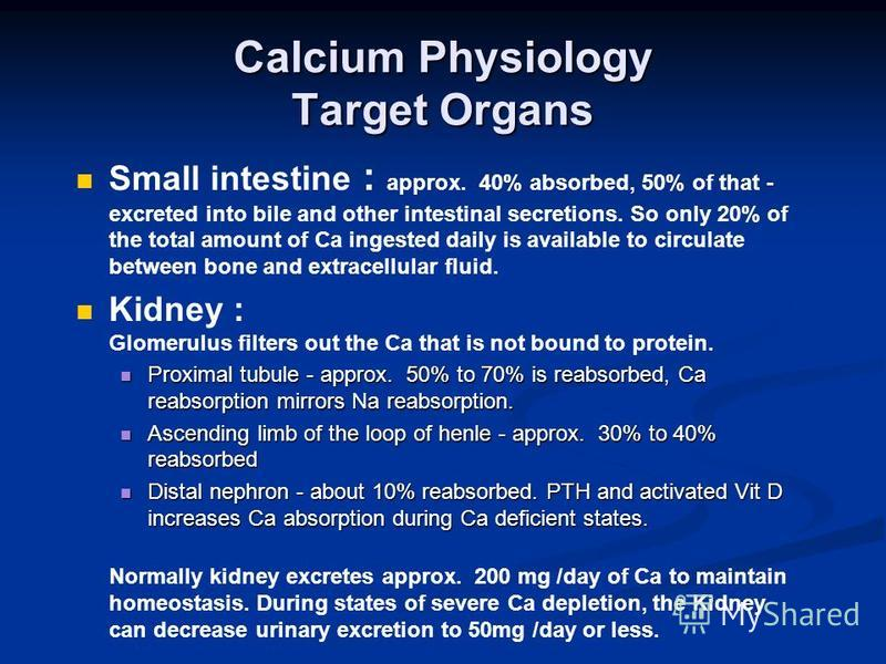 Calcium Physiology Target Organs Small intestine : approx. 40% absorbed, 50% of that - excreted into bile and other intestinal secretions. So only 20% of the total amount of Ca ingested daily is available to circulate between bone and extracellular f