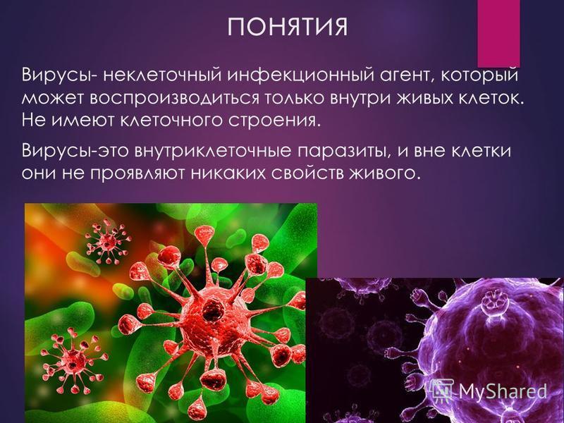 понятия Вирусы- неклеточный инфекционный агент, который может воспроизводиться только внутри живых клеток. Не имеют клеточного строения. Вирусы-это внутриклеточные паразиты, и вне клетки они не проявляют никаких свойств живого.