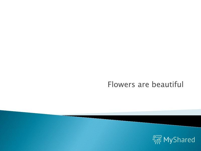 Flowers are beautiful