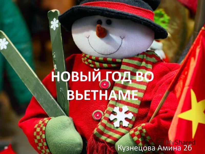 НОВЫЙ ГОД ВО ВЬЕТНАМЕ Кузнецова Амина 2 б