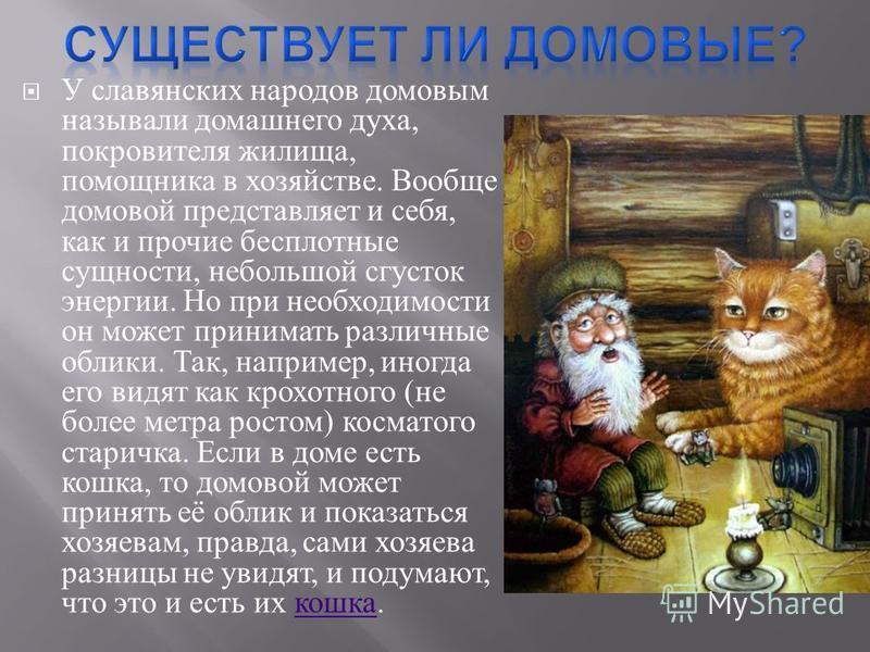 У славянских народов домовым называли домашнего духа, покровителя жилища, помощника в хозяйстве. Вообще домовой представляет и себя, как и прочие бесплотные сущности, небольшой сгусток энергии. Но при необходимости он может принимать различные облики