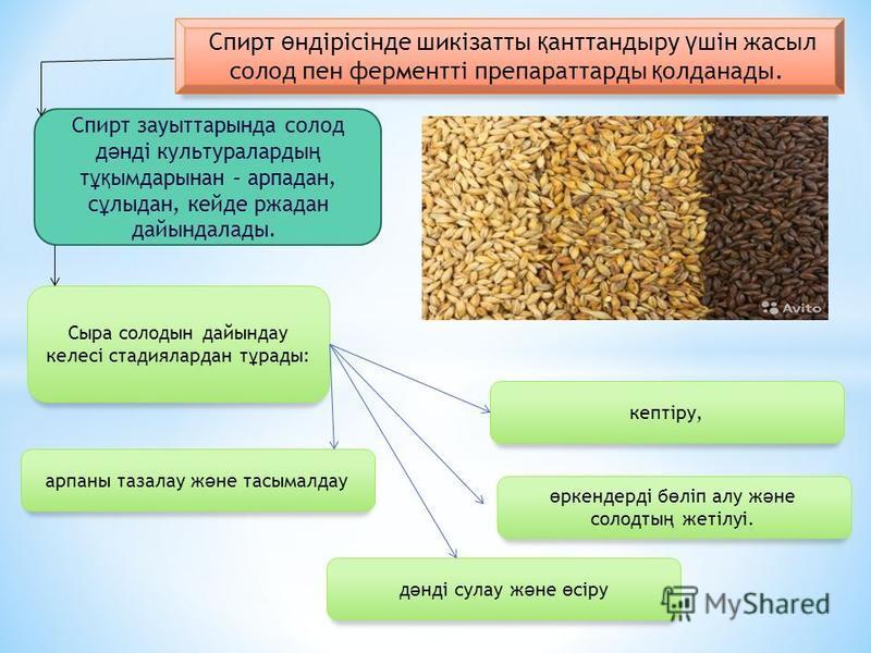 Сыра – құнарлы сусин, оның құрамттында көмірсулар, ақуфыздар, витаминдер және органикалық қышқбылдар бар; ақшил странның энергетикалық қабілеттілігі 17002200 к Дж/кг, темный 3400 к Дж/кг.