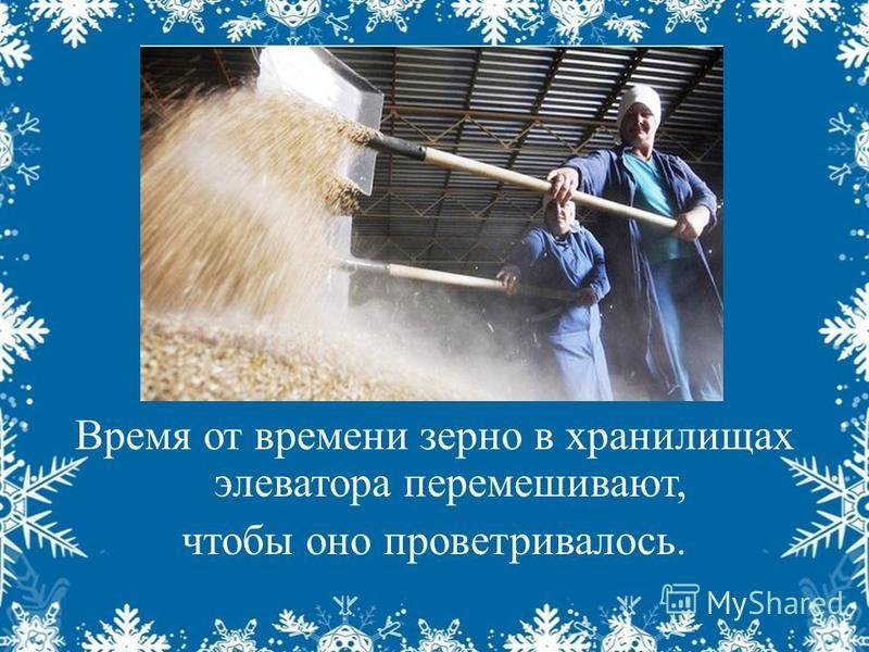 Время от времени зерно в хранилищах элеватора перемешивают, чтобы оно проветривалось.