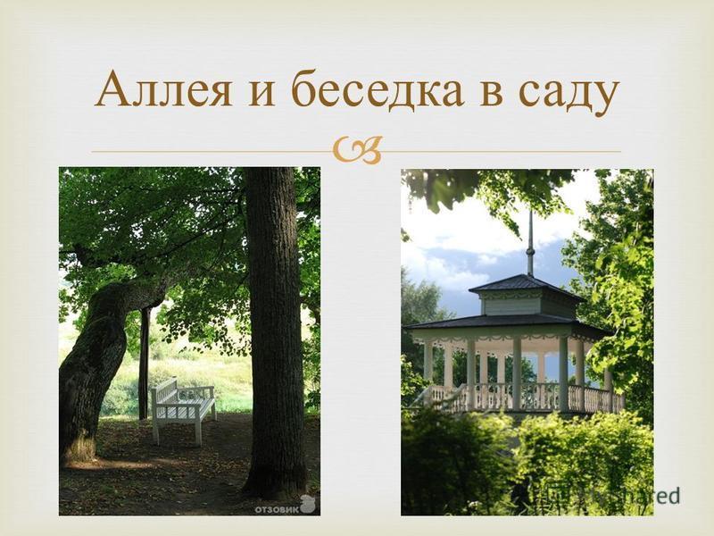 Аллея и беседка в саду