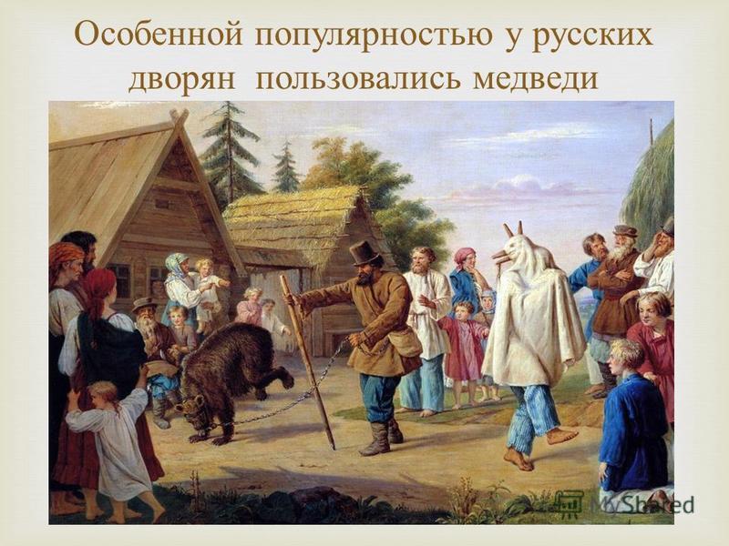 Особенной популярностью у русских дворян пользовались медведи