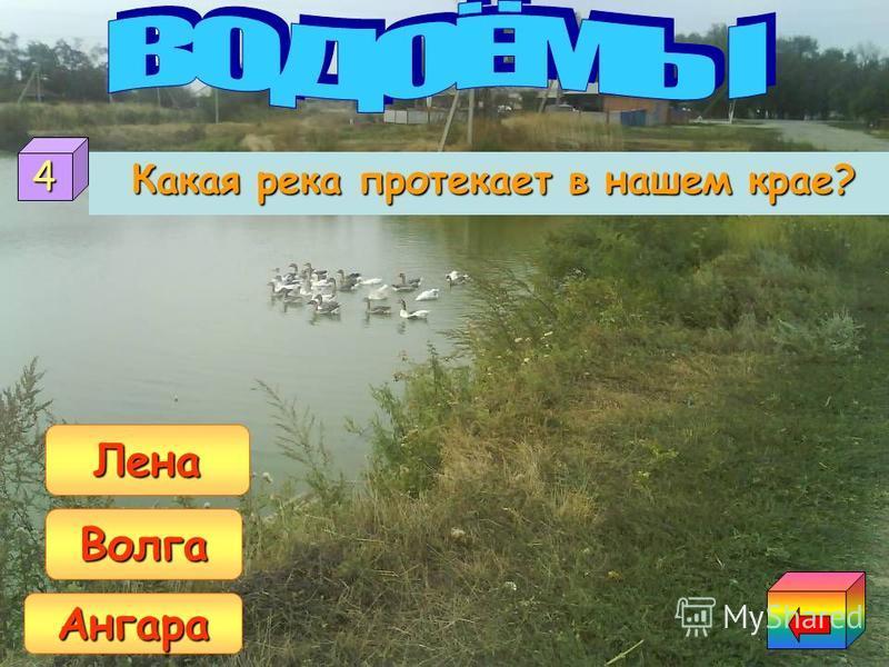 На каком водохранилище построена самая мощная в Иркутской области ГЭС? На Братском На Усть-Илимском На Богучанском 3
