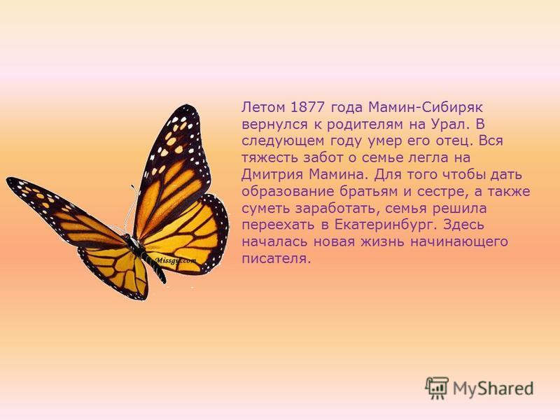 Летом 1877 года Мамин-Сибиряк вернулся к родителям на Урал. В следующем году умер его отец. Вся тяжесть забот о семье легла на Дмитрия Мамина. Для того чтобы дать образование братьям и сестре, а также суметь заработать, семья решила переехать в Екате