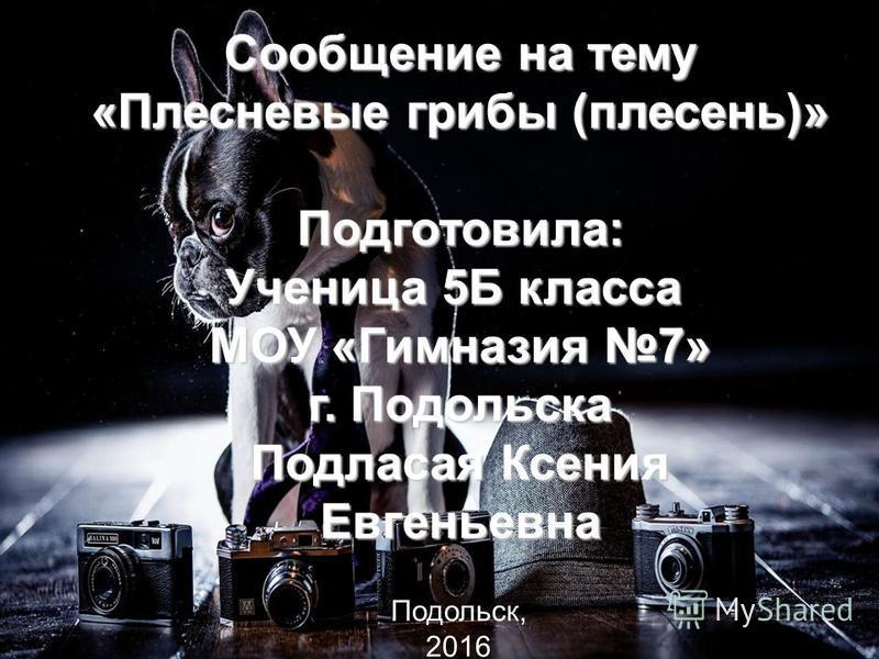 сообщение на тему инфляция в россии