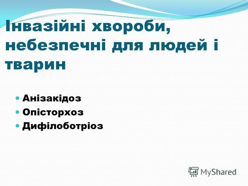 Інвазійні хвороби, небезпечні для людей і тварин Анізакідоз Опісторхоз Дифілоботріоз