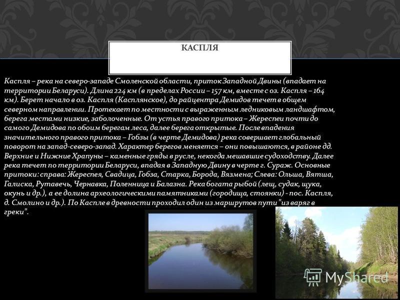 РЕССЕТА Река Рессета, крупный правый приток Жиздры, вытекает из болот у деревни Богатово на северо - востоке Брянской области, течет в верховьях на восток, затем поворачивает на северо - восток и север и впадает в Жиздру на 128- м км на уровне 149 м.