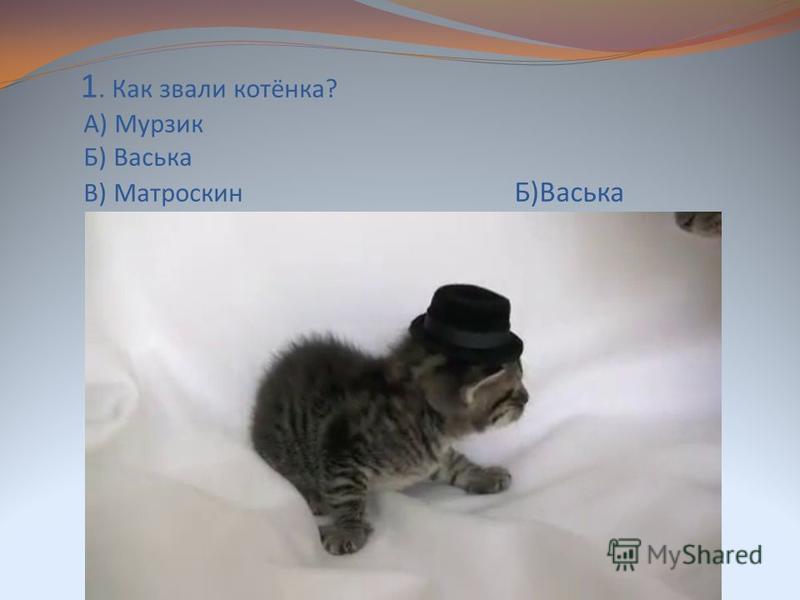 1. Как звали котёнка? А) Мурзик Б) Васька В) Матроскин Б)Васька