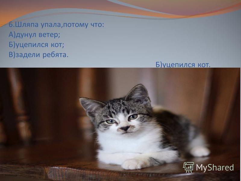 6. Шляпа упала,потому что: А)дунул ветер; Б)уцепился кот; В)задели ребята. Б)уцепился кот.